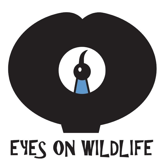 Eyes on Wildlife - Birding & Wildlife Tours